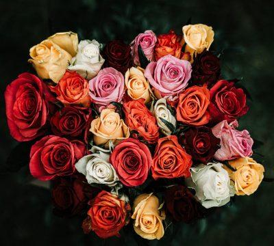 wake flowers